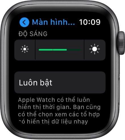thay màn hình apple watch